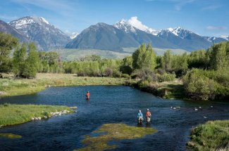 Montana Spring Creek Fishing