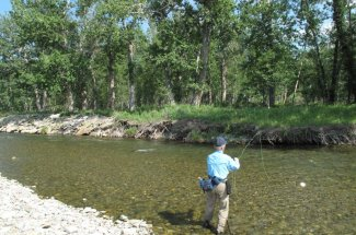 montana angler fly fishing guided trip
