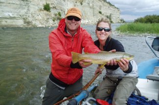 brown trout guided trip fly fishing montana fish