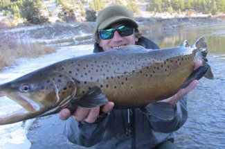 winter brown trout guided trip fly fishing montana angler