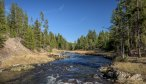 The Gibbon River is an excellent trout fishery in Yellowstone National Park