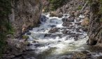 Fly Fishing Trips in Yellowstone National Park