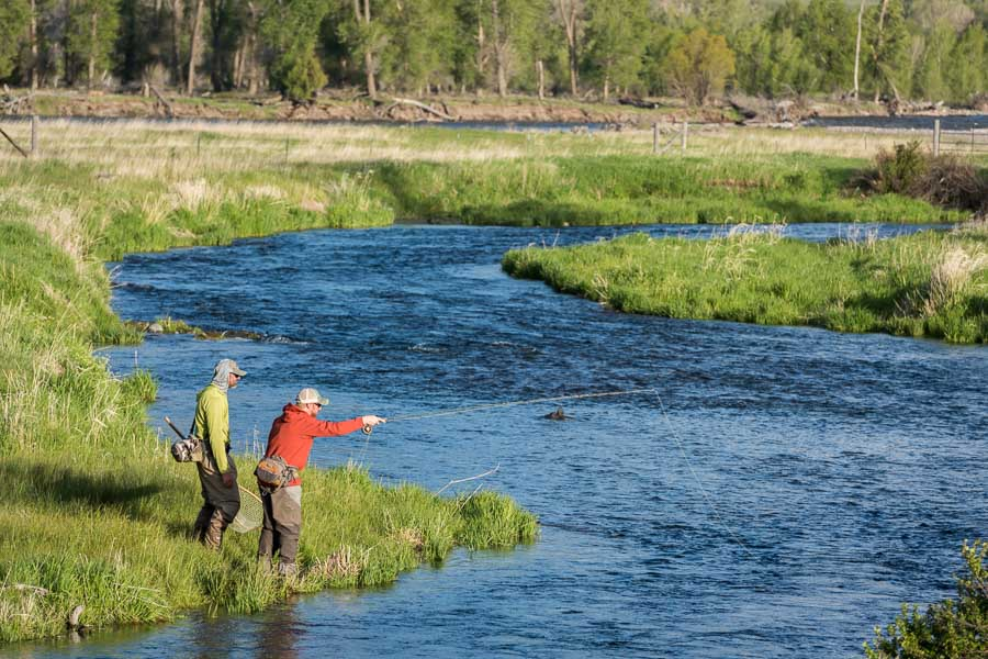 Elimination drag will lead to higher catch rates on the Spring Creeks