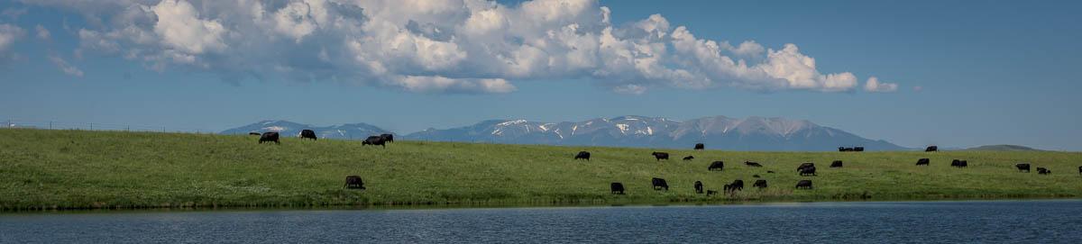 Montana Lakes