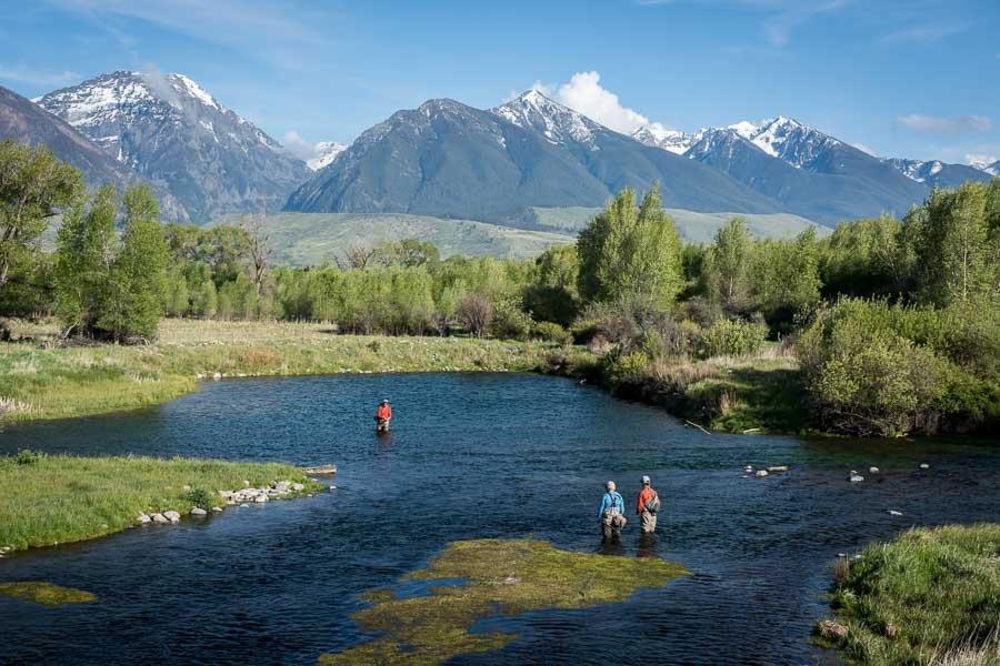Montana Spring Creek Fishing