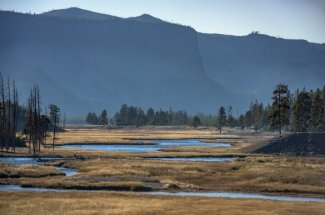 guided fall fishing trip in Yellowstone Park