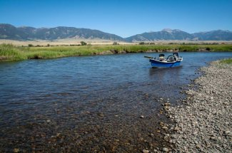river montana fly fishing yellowstone park guided trip