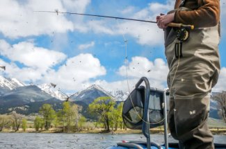 hatch montana mayfly guided trip fly fishing