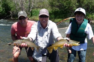 brown trout rainbow trout montana fly fishing guided trip