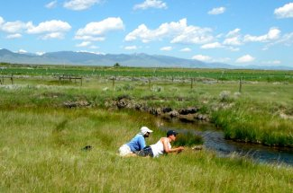 stream river fly fishing montana guide guided trip yellowstone national park