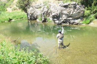 stream creek montana fly fishing guided trip adventure