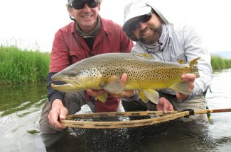 brown trout fly fishing netted yellowstone national park