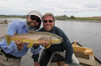 stunning montana brown trout fly fishing angler guided trip
