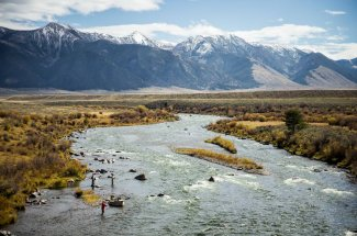 trout fly fishing guided trip montana angler
