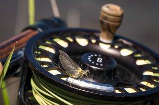 fly reel fly fishing hatch montana