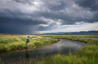 montana spring creek fly fishing technical fishing guided trip