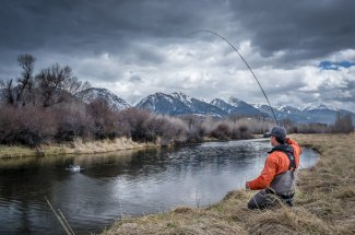 fall montana fly fishing hook up brown trout rainbow trout brook trout