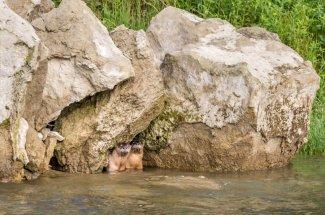 river otters fishing fly fishing montana
