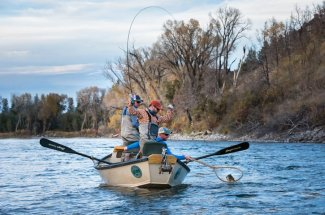 brown trout rod bent fly fishing montana adventure
