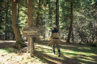fly fishing montana guided trip brown trout