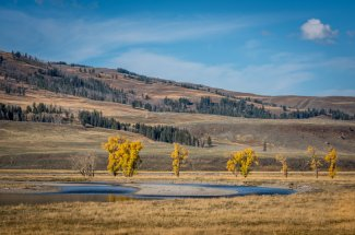 Montana Angler offers wade fishing trips on the Lamar River in Yellowstone National Park