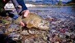 Montana Angler Float Fishing Trips