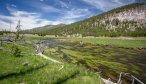 Montana Angler Fly Fishing Wade Trips in Yellowstone National Park
