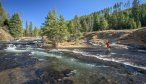 Fly Fishing the Gibbon Canyon in Yellowstone National Park